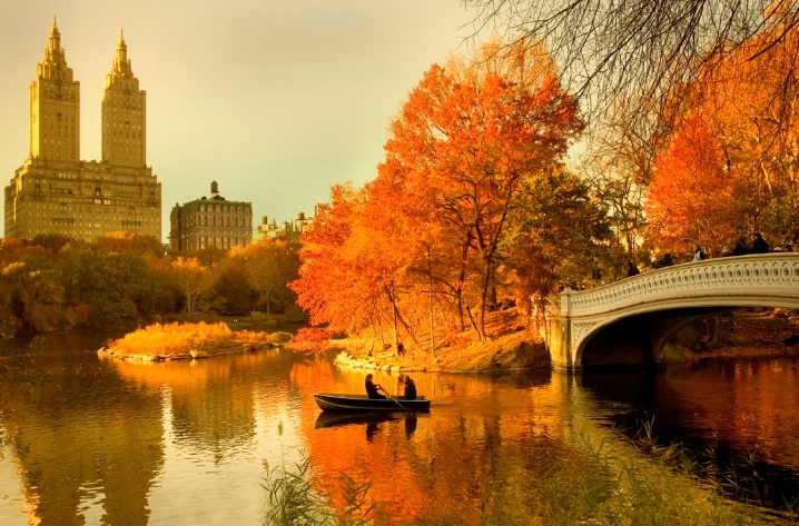 Autumn in NYC will be different this year…